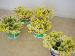 daffodils in buckets