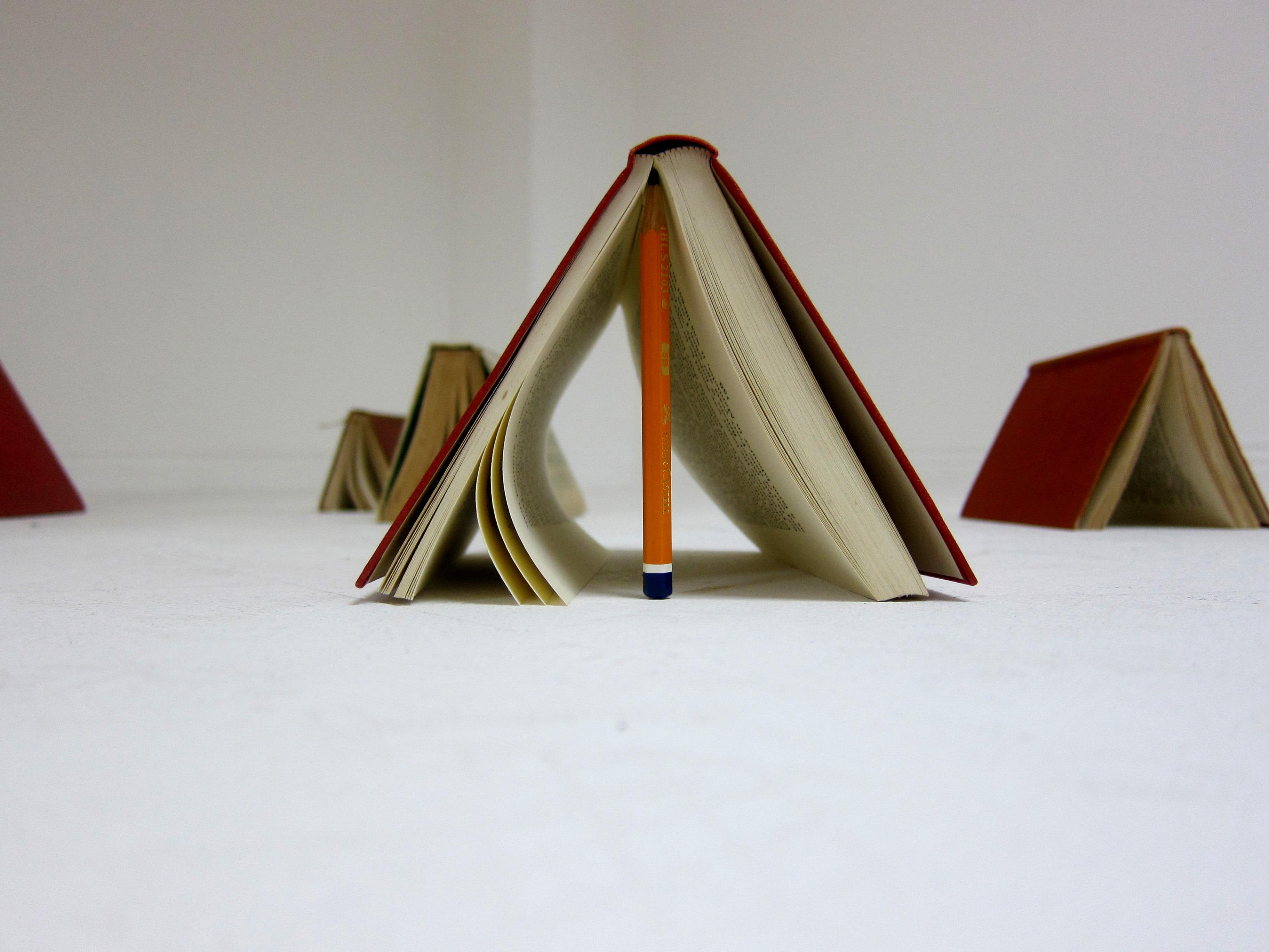 DUYÊN TÌNH - Page 5 Book-tents-close-up